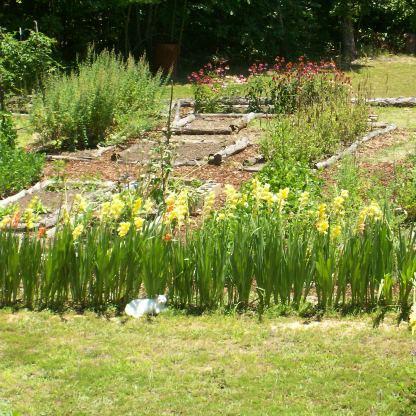 Garden 10 001